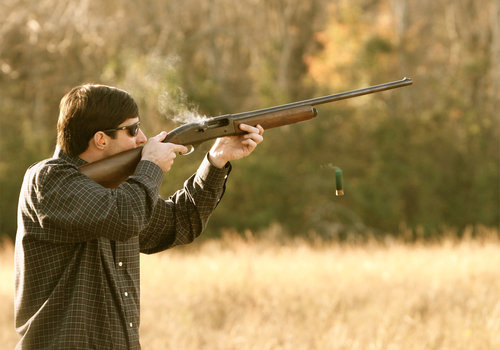 Modulo richiesta porto d 39 armi per uso caccia - Porta d armi uso sportivo ...
